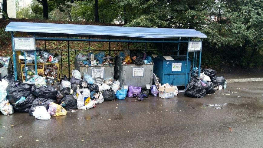 Сихів потопає у смітті (ФОТО), фото-4