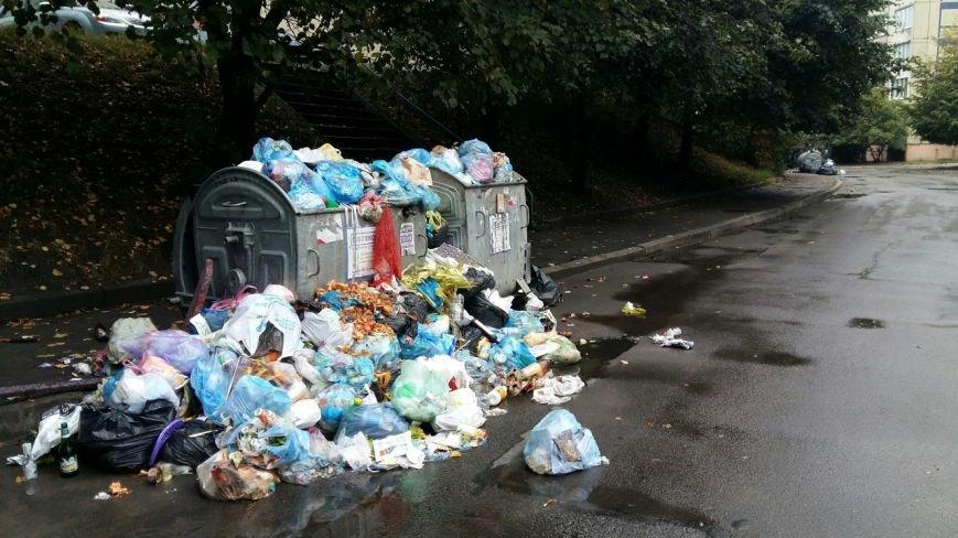Сихів потопає у смітті (ФОТО), фото-3