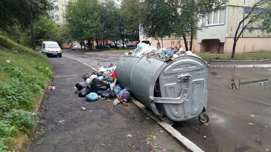 Сихів потопає у смітті (ФОТО), фото-8