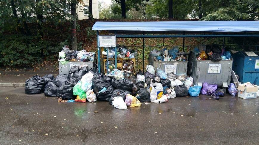Сихів потопає у смітті (ФОТО), фото-1