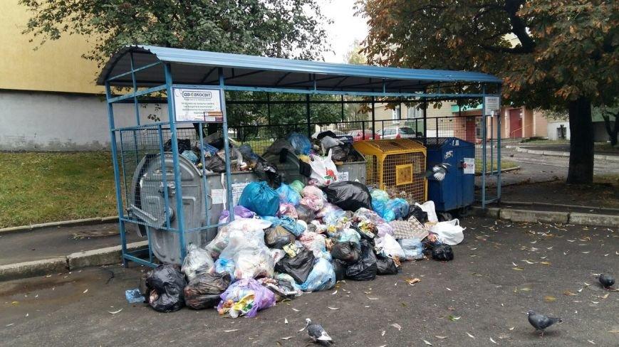 Сихів потопає у смітті (ФОТО), фото-6