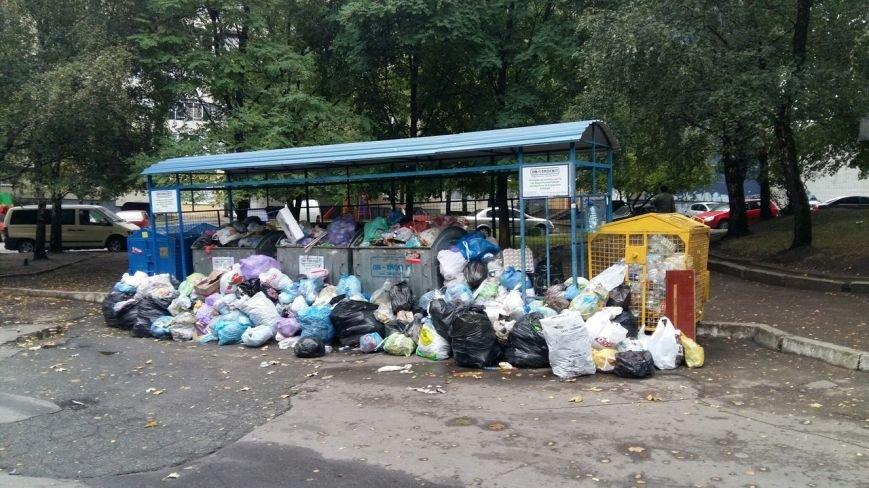Сихів потопає у смітті (ФОТО), фото-10