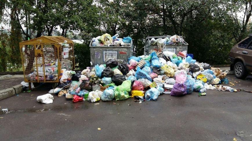 Сихів потопає у смітті (ФОТО), фото-9