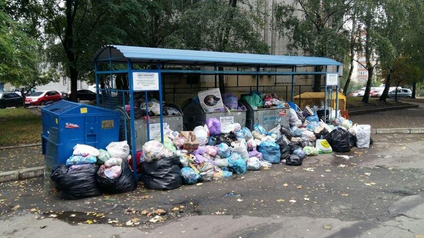 Сихів потопає у смітті (ФОТО), фото-2