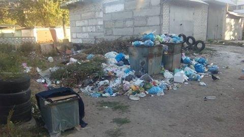 Мусорная анархия по-северодонецки (фото), фото-1