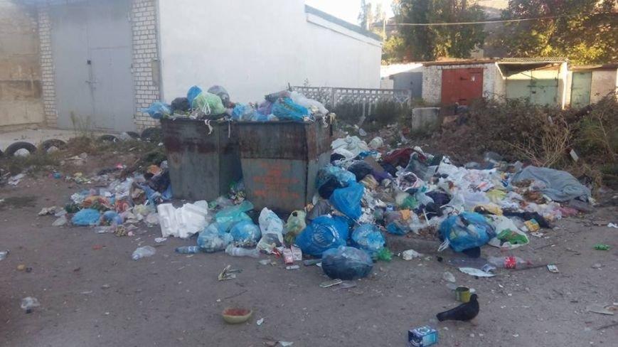 Мусорная анархия по-северодонецки (фото), фото-2
