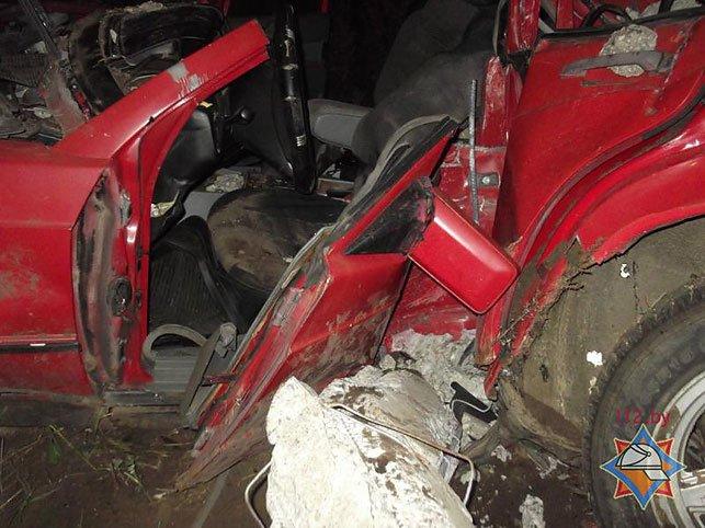 В Быховском районе водитель Mersedess врезался в опору ЛЭП и оказался заблокирован (Фото), фото-3