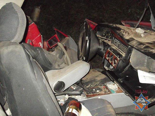 В Быховском районе водитель Mersedess врезался в опору ЛЭП и оказался заблокирован (Фото), фото-4