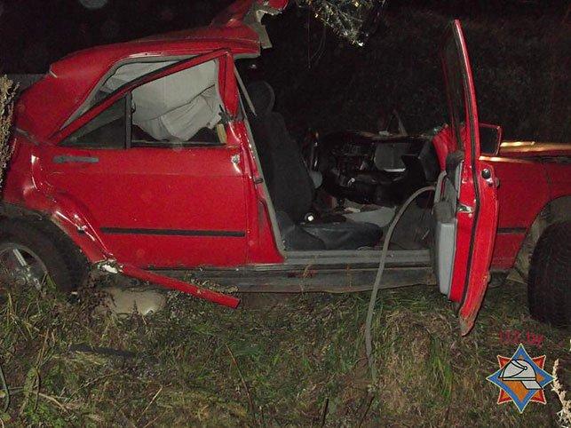 В Быховском районе водитель Mersedess врезался в опору ЛЭП и оказался заблокирован (Фото), фото-1