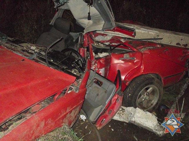 В Быховском районе водитель Mersedess врезался в опору ЛЭП и оказался заблокирован (Фото), фото-5