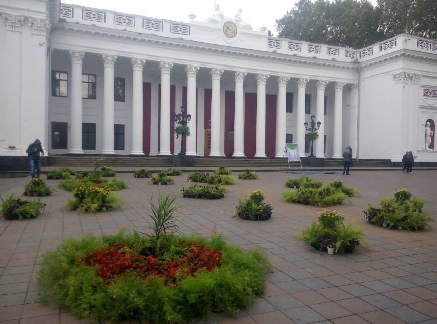 На главной площади Одессы выставка икебан и рабочая приемная народного депутата (ФОТО), фото-3