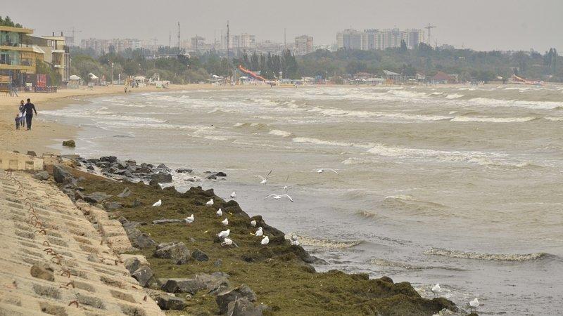 У берегов Одессы вспенилось море (ФОТО), фото-6
