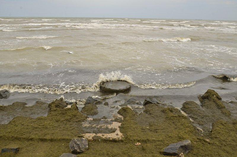 У берегов Одессы вспенилось море (ФОТО), фото-5