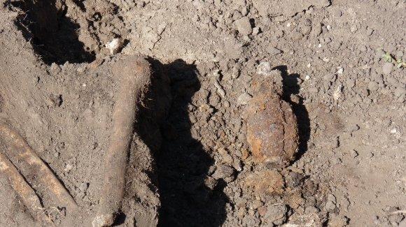 В Александрии нашли скелет с гранатой, фото-2