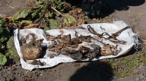 В Александрии нашли скелет с гранатой, фото-3