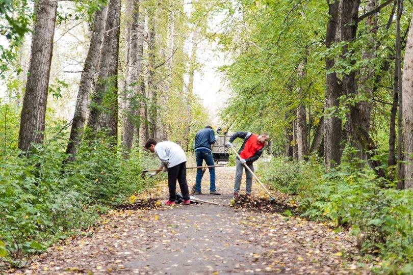 Жители южной части Полевского совместными усилиями прибрали парк, фото-16
