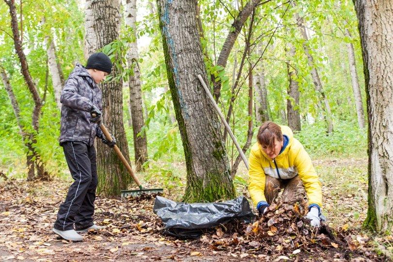 Жители южной части Полевского совместными усилиями прибрали парк, фото-8