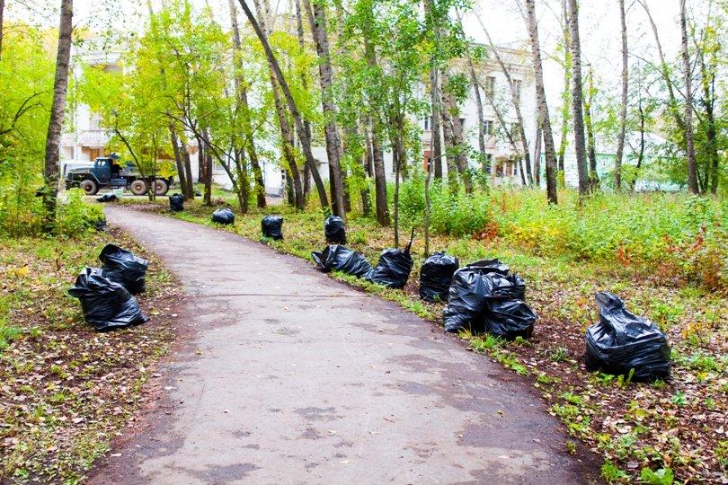 Жители южной части Полевского совместными усилиями прибрали парк, фото-23