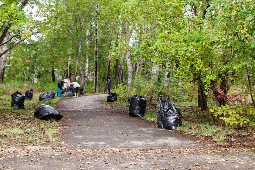 Жители южной части Полевского совместными усилиями прибрали парк, фото-19