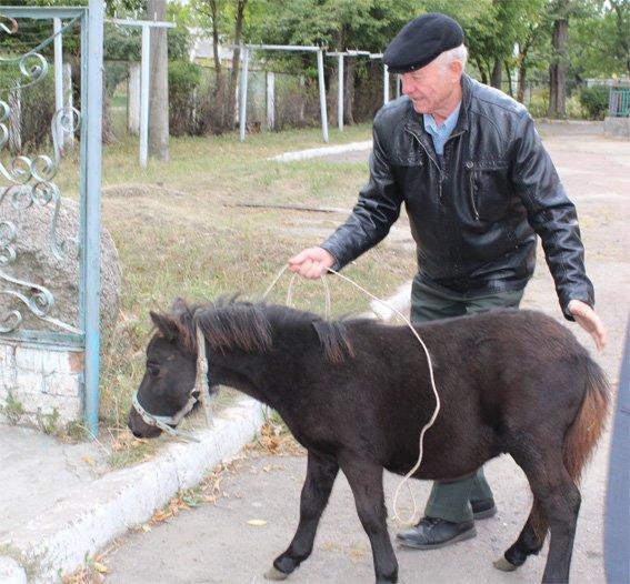 Полицейские подарили жителям дома ребенка пони (ФОТО), фото-5