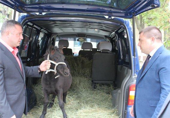 Полицейские подарили жителям дома ребенка пони (ФОТО), фото-1
