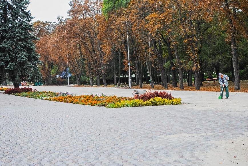 Огромная сцена и деревянные домики для торговли: как Кременчуг готовится к фестивалю сладостей, фото-5