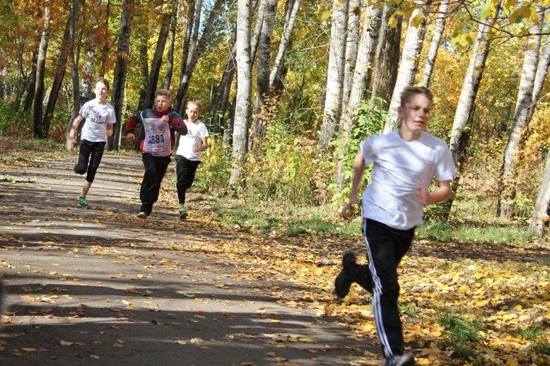 Полевчане приняли участие в «Кроссе наций-2016», фото-3
