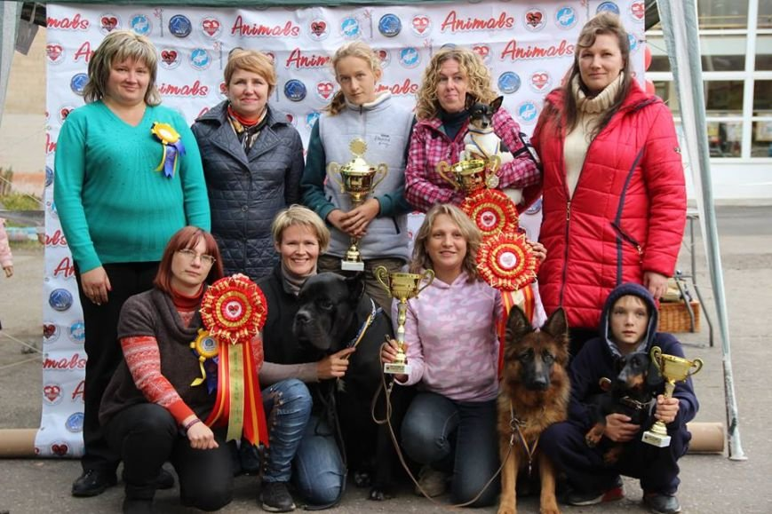 В Краматорске выбрали лучшую собаку, фото-5