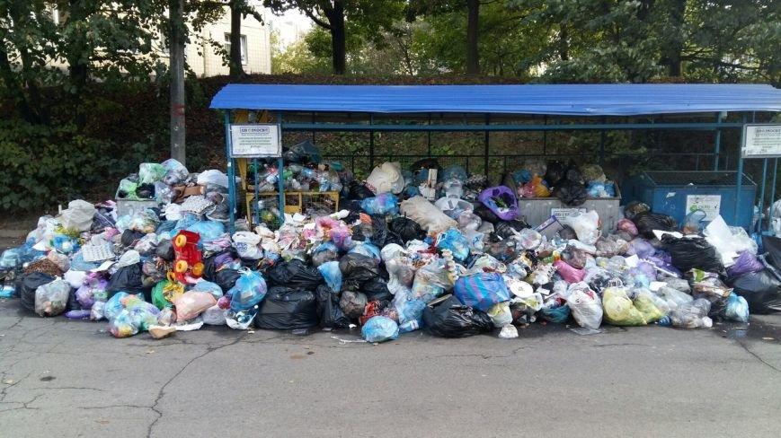 Львів продовжує потопати у смітті: фоторепортаж, фото-8