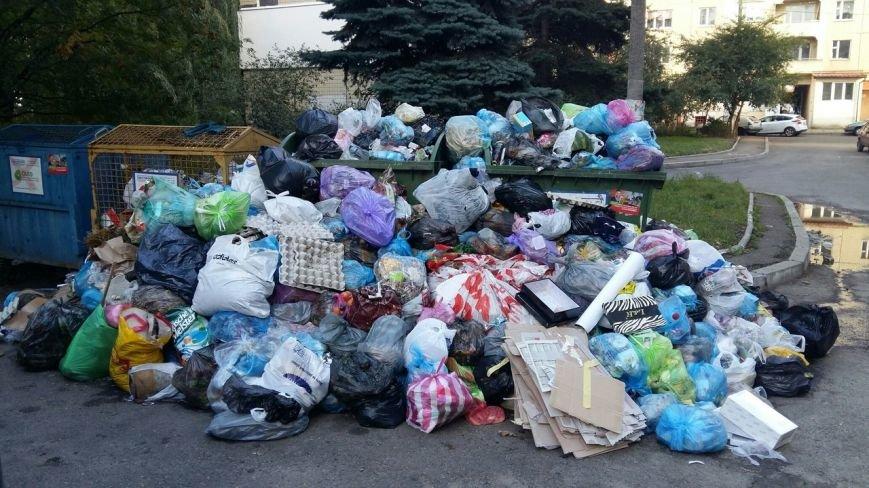Львів продовжує потопати у смітті: фоторепортаж, фото-7