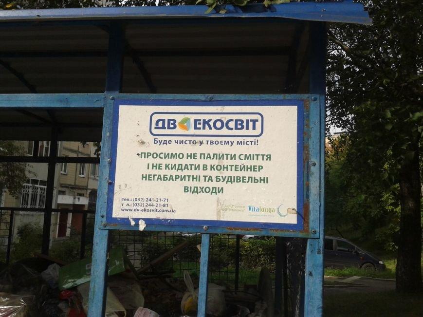 Львів продовжує потопати у смітті: фоторепортаж, фото-3