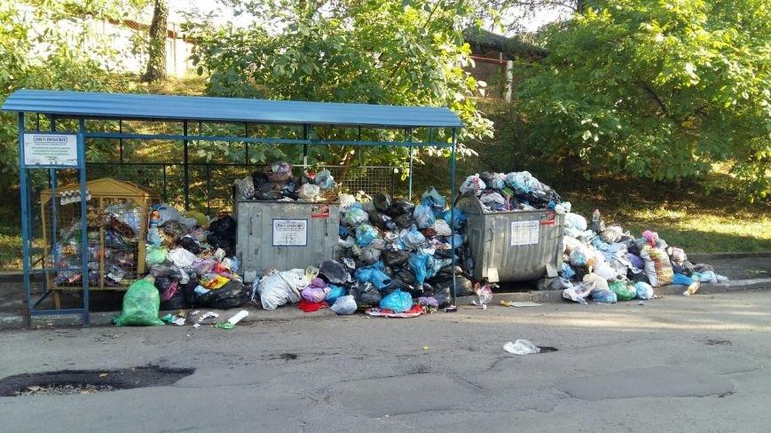 Львів продовжує потопати у смітті: фоторепортаж, фото-11