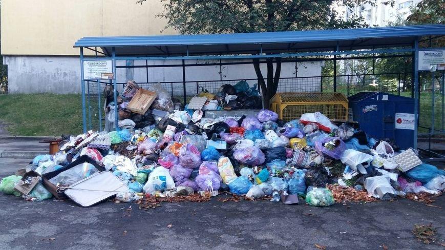Львів продовжує потопати у смітті: фоторепортаж, фото-10