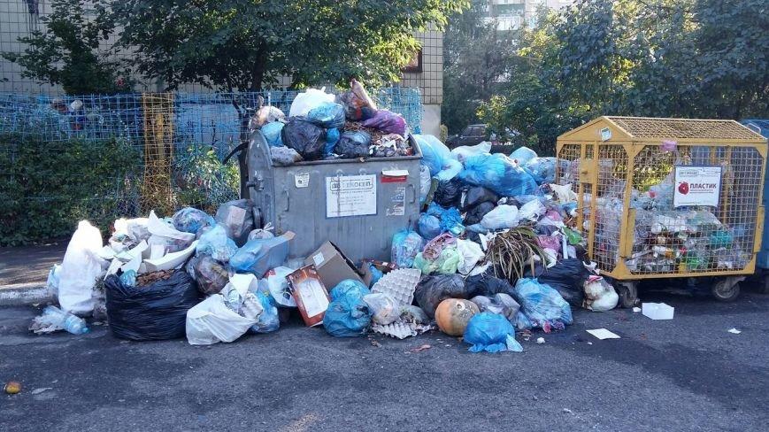 Львів продовжує потопати у смітті: фоторепортаж, фото-9