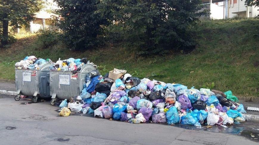 Львів продовжує потопати у смітті: фоторепортаж, фото-12