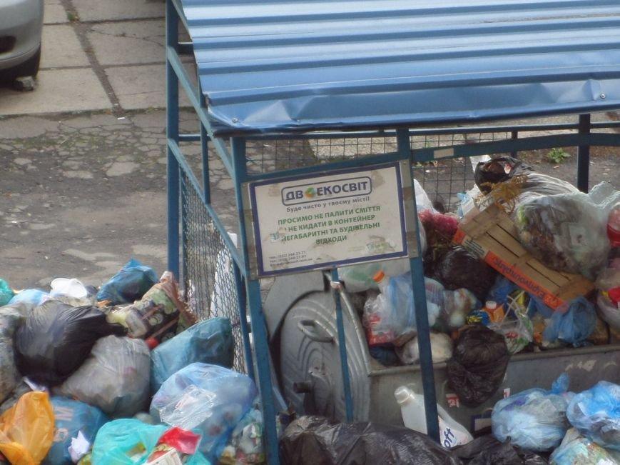 Львів продовжує потопати у смітті: фоторепортаж, фото-4