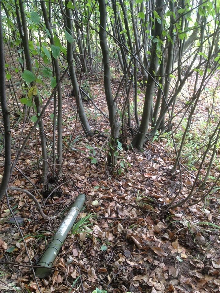 На Прикарпатті у лісовому масиві місцеві мешканці знайшли гранатомет (ФОТО), фото-1