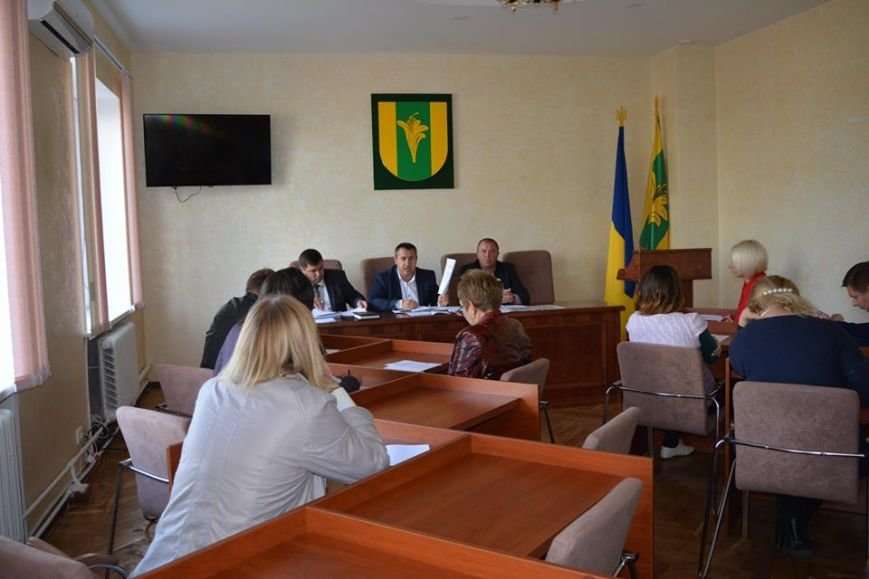 Відбулося засідання постійної комісії з питань освіти та культури Новоград-Волинського району, фото-3