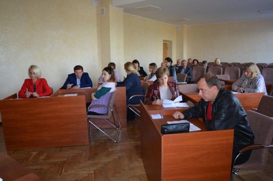 Відбулося засідання постійної комісії з питань освіти та культури Новоград-Волинського району, фото-2