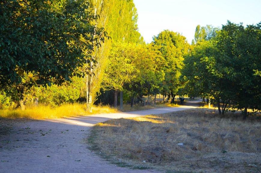 Осенний ботанический сад им. Н.В. Багрова (ФОТО), фото-1