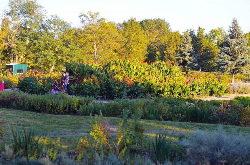 Осенний ботанический сад им. Н.В. Багрова (ФОТО), фото-3