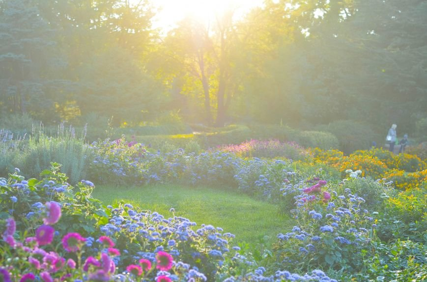 Осенний ботанический сад им. Н.В. Багрова (ФОТО), фото-14