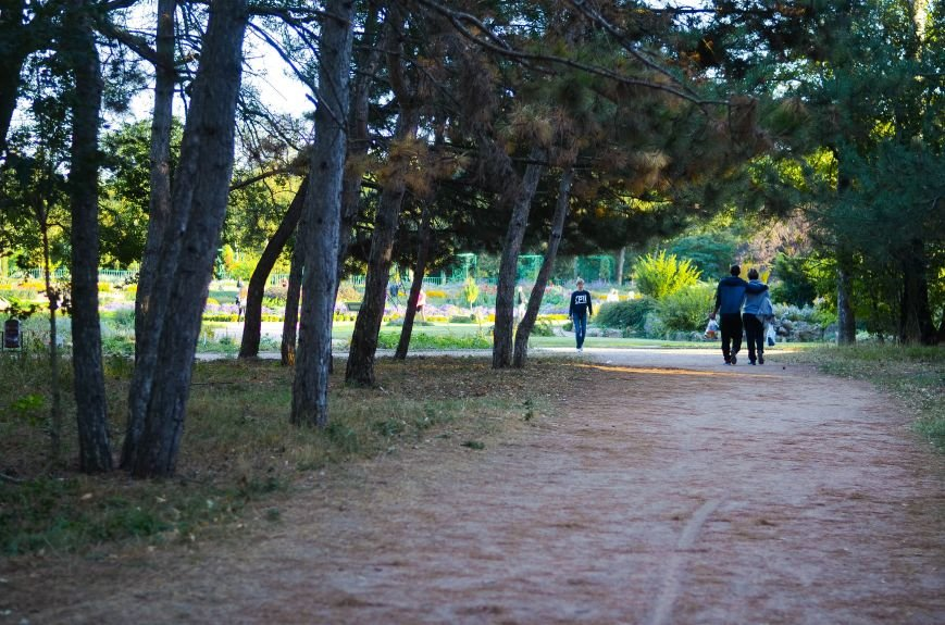Осенний ботанический сад им. Н.В. Багрова (ФОТО), фото-2
