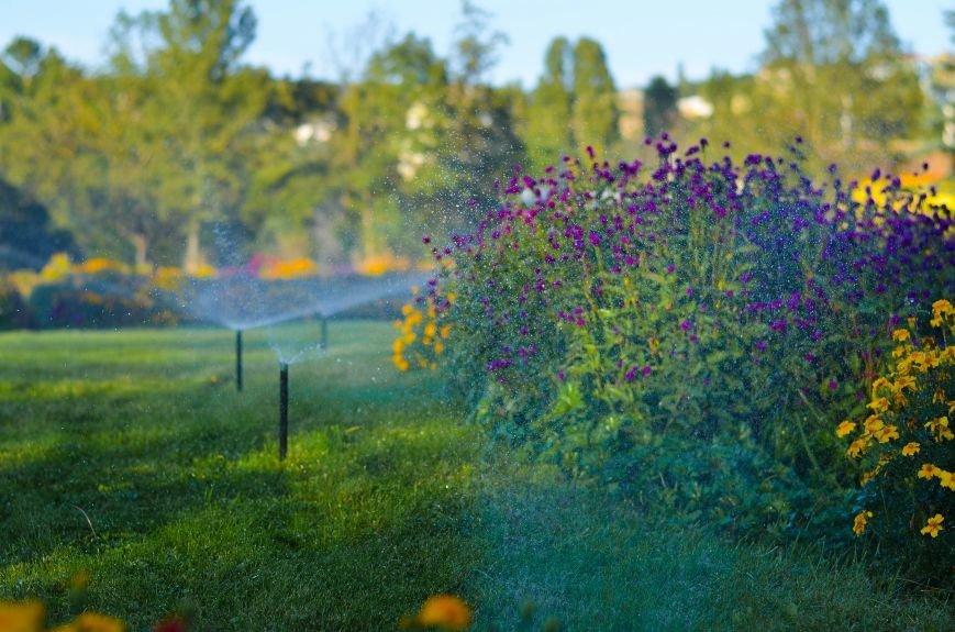 Осенний ботанический сад им. Н.В. Багрова (ФОТО), фото-11