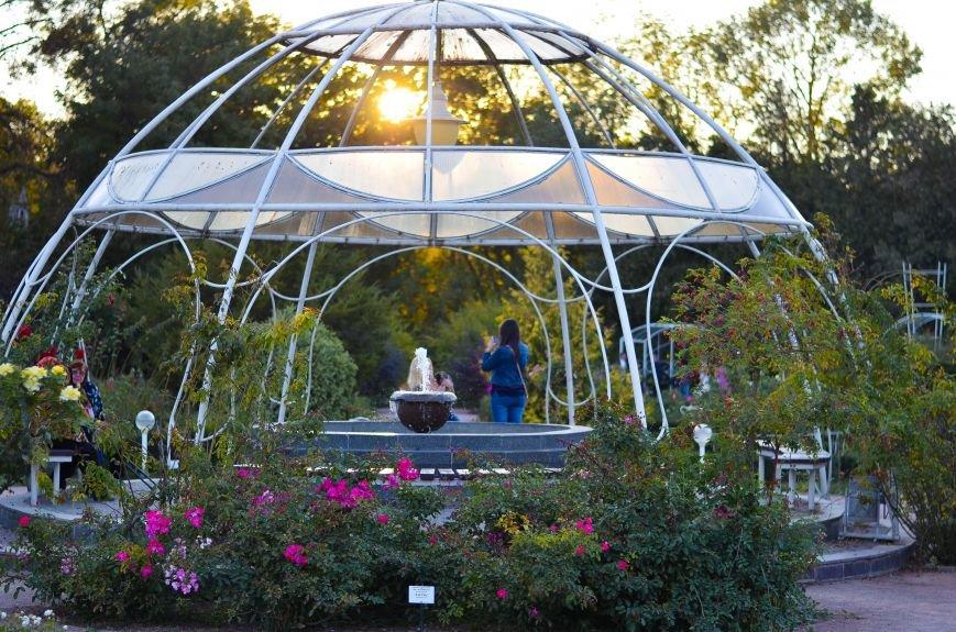 Осенний ботанический сад им. Н.В. Багрова (ФОТО), фото-16