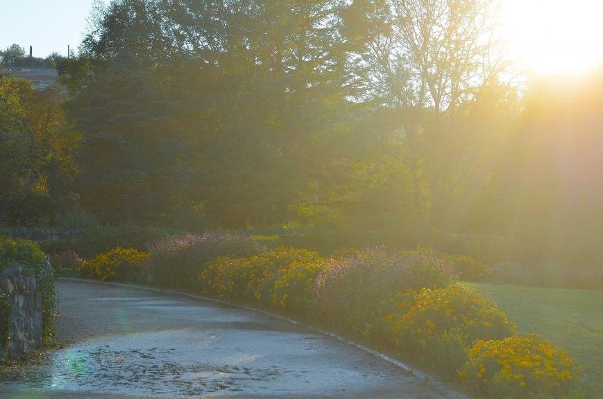 Осенний ботанический сад им. Н.В. Багрова (ФОТО), фото-13