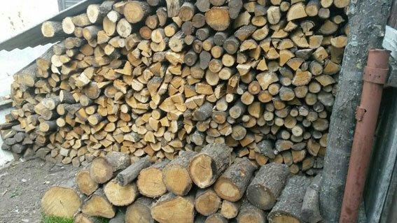 З сокирою на поліцейських: на Конотопщині чоловік намагався приховати незаконну порубку лісу (ФОТО), фото-3