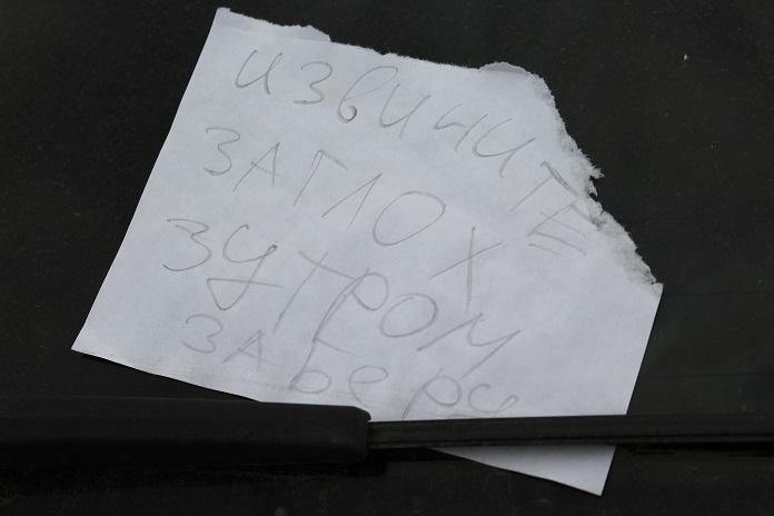 В Шумилинском районе убили бизнесмена из Витебска. Тело обнаружили в кустах, фото-2