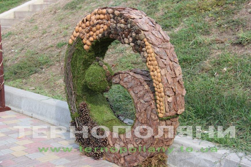 У Тернополі презентували «Найбільшу книгу з квітів» (фото), фото-3