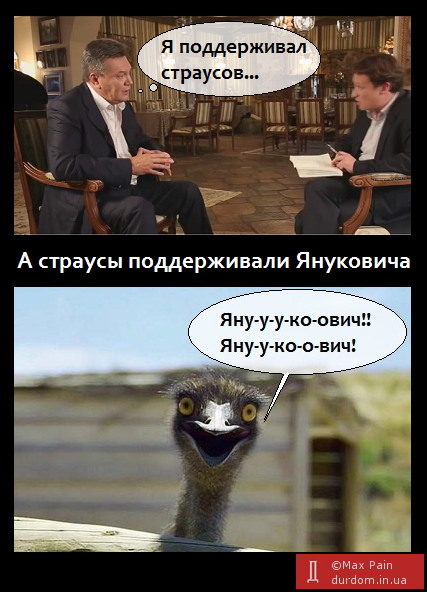 Курьезы недели: Малява от Януковича,  Путин и проституция, шпагат Обамы, работа для Пескова, фото-1